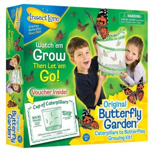 Live Butterfly Garden With Certificate for Caterpillars LATER 1010