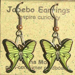 Luna Moth Earrings 429Z