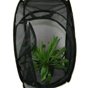 Professional Butterfly Habitat - Black 12 X 24